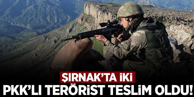 Şırnak'ta iki PKK'lı terörist teslim oldu