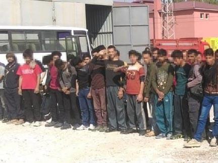 Van'da 77 düzensiz göçmen yakalandı