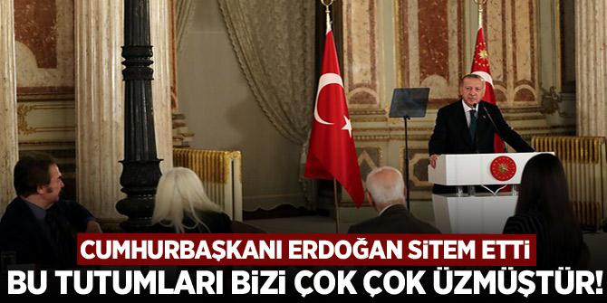 Cumhurbaşkanı Erdoğan sitem etti: Bu tutumları bizi çok çok üzmüştür