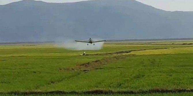 Ülkede ilaçlama uçağı düştü!