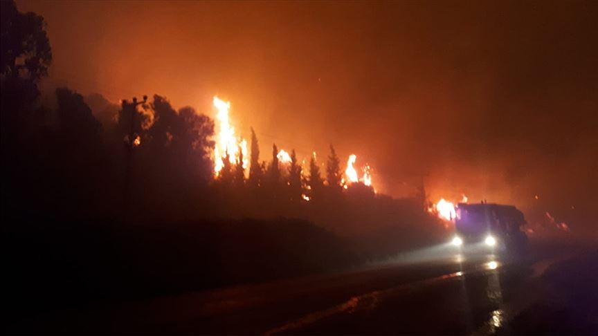 İzmir'de otluk alanda çıkan yangında 2 otel tahliye edildi