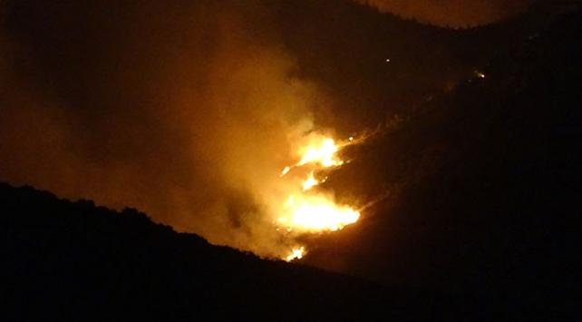 Adana'daki orman yangını yeniden başladı