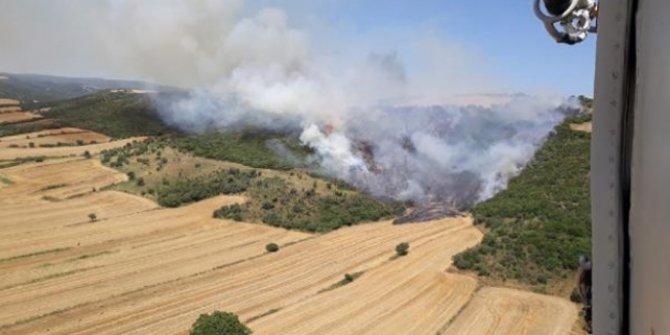 Çanakkale'nin Gelibolu'da yangın