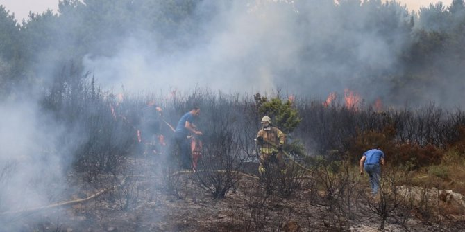 İstanbul'da Aydos ormanlarında yangın