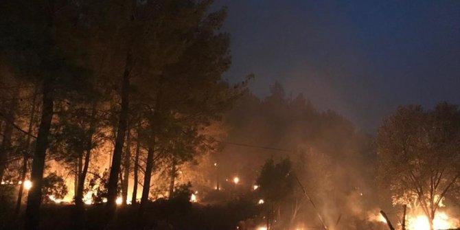 Muğla'da orman yangını (Göcek'te yeniden başladı)