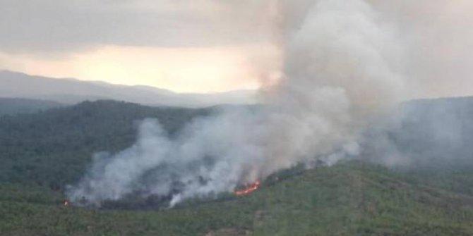 Muğla'da orman yangını meydana geldi