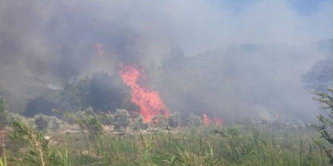 Silifke ilçesinde ormanlık alanda  yangın