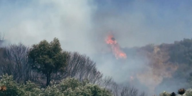 Marmaris'te orman yangınlarına bidonlu önlem