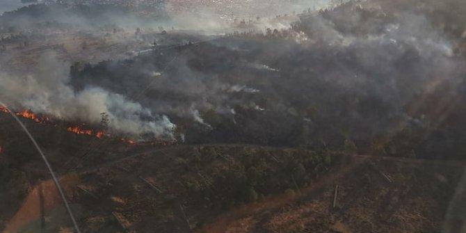 Ağaçlandırma sahasında yangın