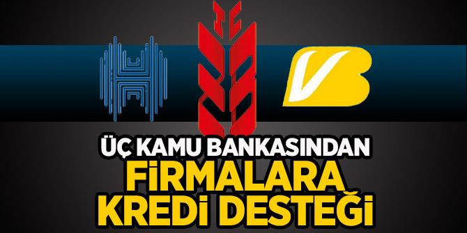 Sondakika! Üç kamu bankasından firmalara kredi destek açıklaması