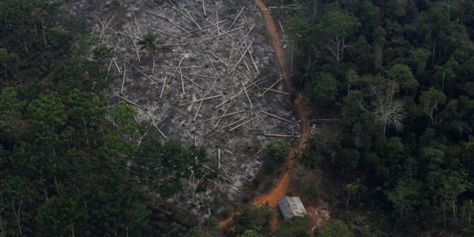 Amazon Ormanları'nda büyük kıyım