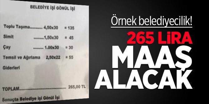Örnek belediyecilik! 265 Lira maaş alacak