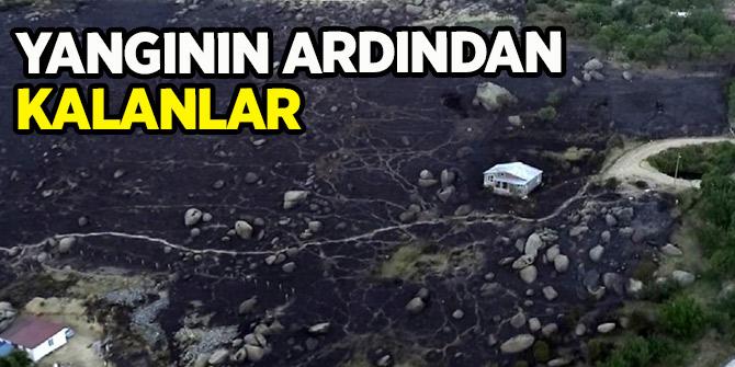 Marmara Adası'nda yangının ardından kalan kareler