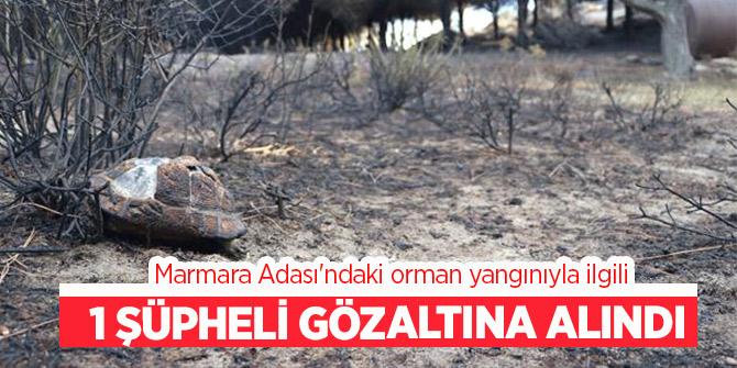 Son dakika...Marmara Adası yangınıyla ilgili   gözaltı