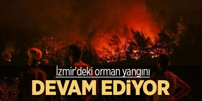 İzmir'deki orman yangını devam ediyor