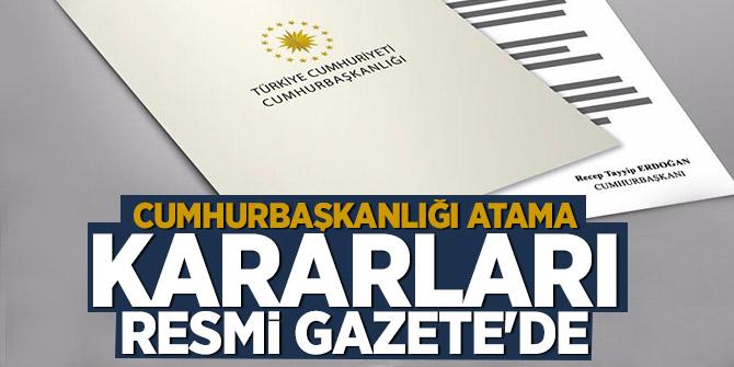 Atama kararları Resmi Gazete'de! Egemen Bağış'a yeni görev!