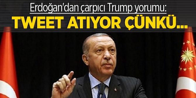Erdoğan'dan çarpıcı Trump yorumu: Tweet atıyor çünkü...
