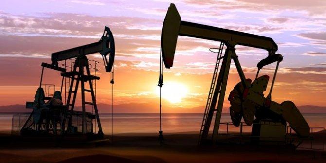 Fitch: Petrol fiyatlarındaki düşüş virüsten daha kötü etkileyecek