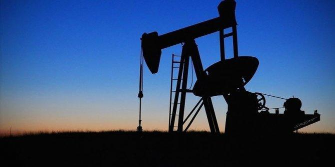 Rusya'dan petrol krizine ilişkin açıklama