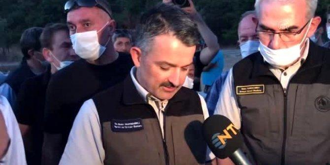 Heybeliada'da çıkan orman yangını ile ilgili 3 şüpheli gözaltına alındı