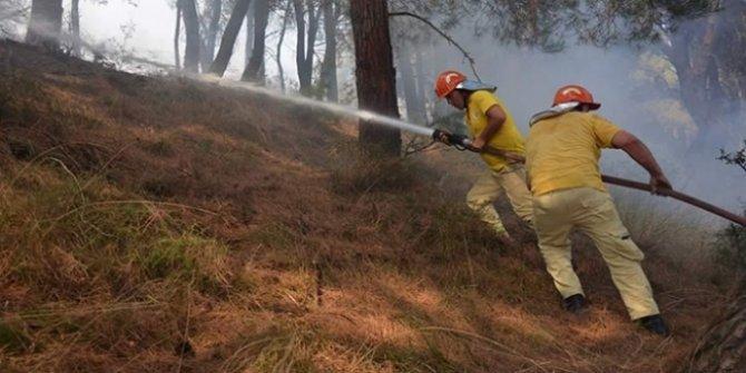 Pakdemirli'den orman yangını paylaşımı: Dün gece rahat uyudunuz mu?