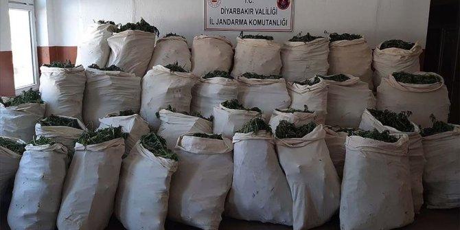 Diyarbakır'da 1 milyon 119 bin kök kenevir ve 756 kilogram esrar ele geçirildi