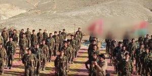 Terör örgütü PKK, Sincar'daki gelir kaynaklarına saldırıyor