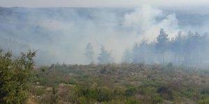 4 ilde 9 yangın: Gündoğmuş ve Hisarönü boşaltılıyor