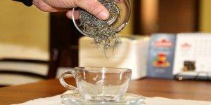 Beyaz çayın yumurtalığı koruyucu etkisi araştırılıyor