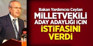 Bakan Yardımcısı Ceylan milletvekili aday adaylığı için istifasını verdi