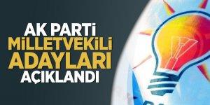AK Parti milletvekili adayları açıklandı