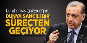 Cumhurbaşkanı Erdoğan: Dünya sancılı bir süreçten geçiyor