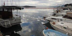 Denizi kirleten gemilere ağır cezalar geldi