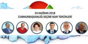 İşte son seçim anketi! Erdoğan'ın oy oranı