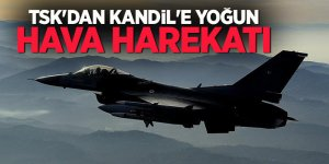 TSK açıkladı: PKK'ya bir darbe daha!