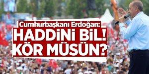 Cumhurbaşkanı Erdoğan: Haddini bil! Kör müsün?