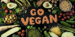 Vegan besinlenme insan sağlığını olumsuz etkiler mi?