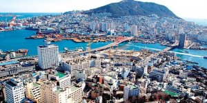 Aşırı sıcaklar 42 can aldı! Yer Güney Kore
