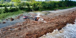 Selde denize sürüklenen ağaçlara vatandaş müdahale etti