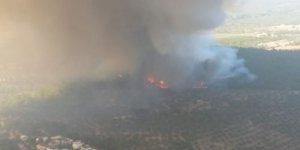 Çanakkale'de orman yangını: Helikopterler müdahale ediyor