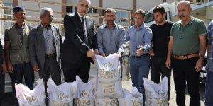 Çiftçilere 20 ton tritikale tohumu dağıtıldı!