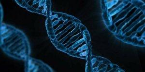 Tükettiğiniz gıdalar DNA'yı etkiliyor