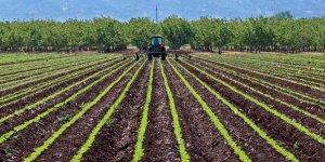 """Bakan Pakdemirli: """"Ziraat, tarımı gerçekten çok stratejik, belki de savunmadan da önemli görmeliyiz""""!"""