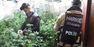 İstanbul Beykoz'da villaya uyuşturucu operasyonu