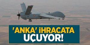 İnsansız hava aracı 'Anka' ihracata uçuyor!