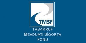 """TMSF'ye geçen """"sorunlu şirketler"""" satılacak"""