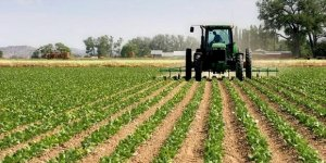 Çiftçiye destek ödemesi ne zaman yapılacak?