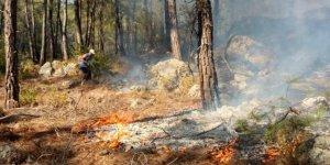 Adana'nın Pozantı ilçesinde orman yangını