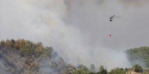 Muğla'da orman yangını! 8 helikopter ve 20 arazözle müdahale ediliyor!