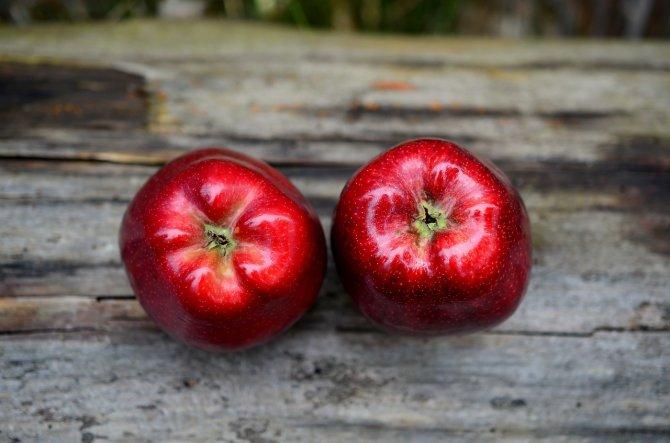Çürük elmalar nasıl değerlendirilir